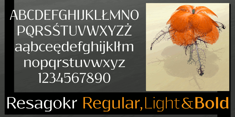 Resagokr - Font Illustration
